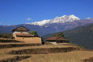 Landscape up the way of Panchase trek
