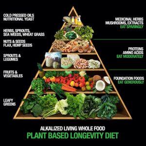 PlantBasedLiving